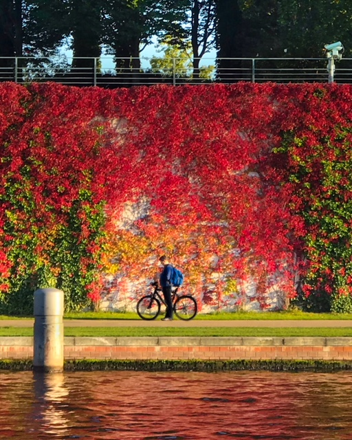 things to do in berlin this fall6