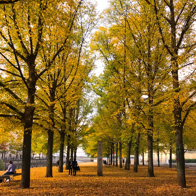 things to do in berlin this fall3